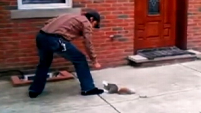 VIDEO: Man in Philadelphia helps free animal from bag.