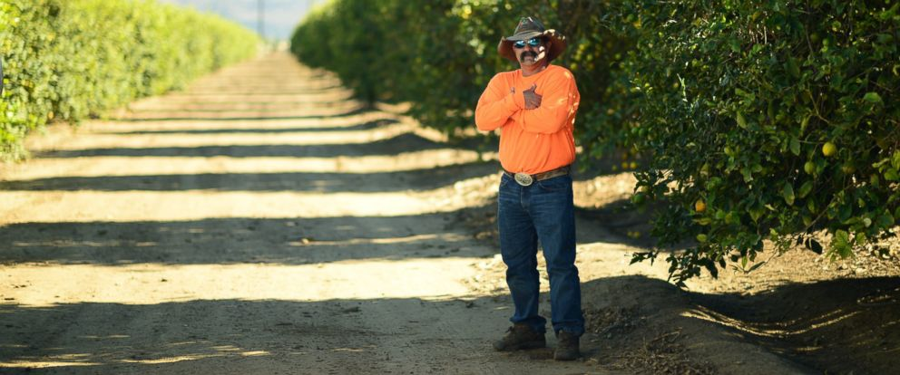 PHOTO: Tree-T-Pee creator and farmer Johnny Georges created the product out of his passion for water conservation.