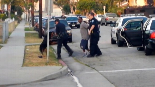 VIDEO: Police investigate fatal shooting of dog during owners arrest in Hawthorne, Calif.