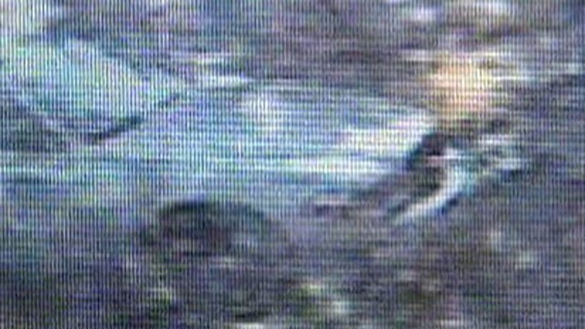VIDEO: Officials in Santa Fe, N.M., are baffled by a mysterious image caught on camera.