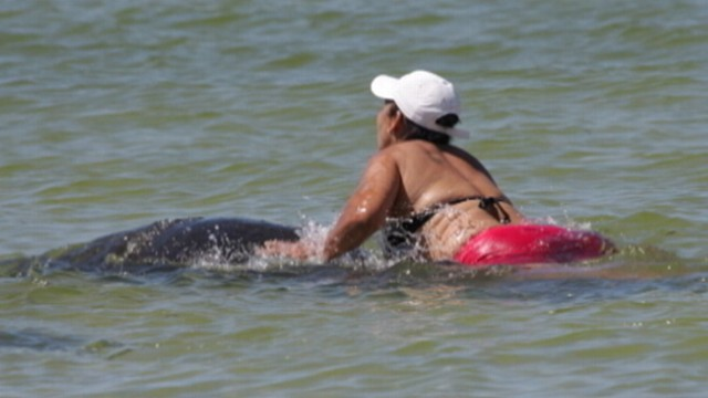 VIDEO: Ana Gloria Garcia Gutierrez didnt realize it was against the law to touch or harass manatees.