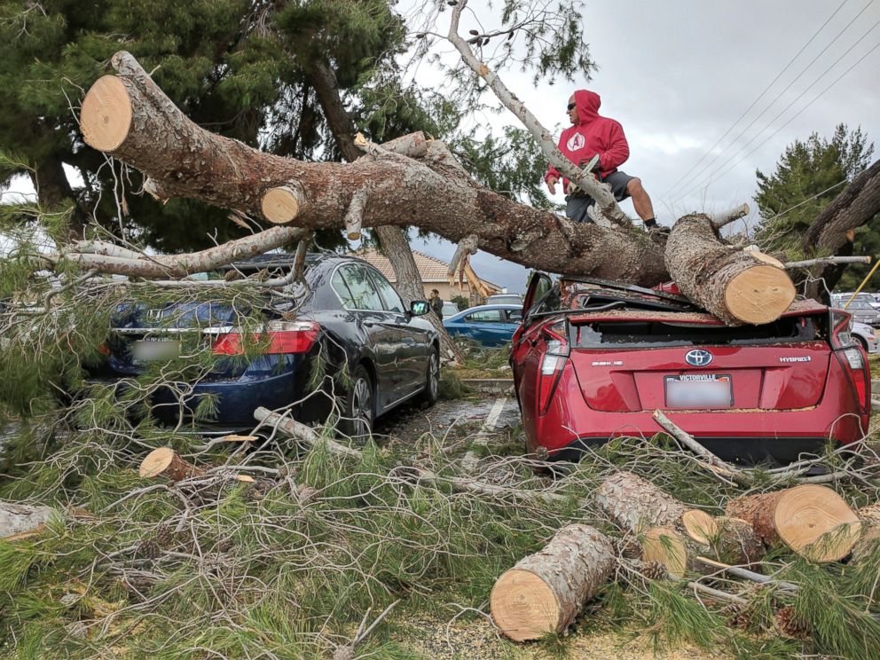 PHOTO: Hesperia Unified School district Maintenance and Operations Staff cut away a tree which fell on a car at Kingston Elementary School in Hesperia, California, Feb. 17, 2017.