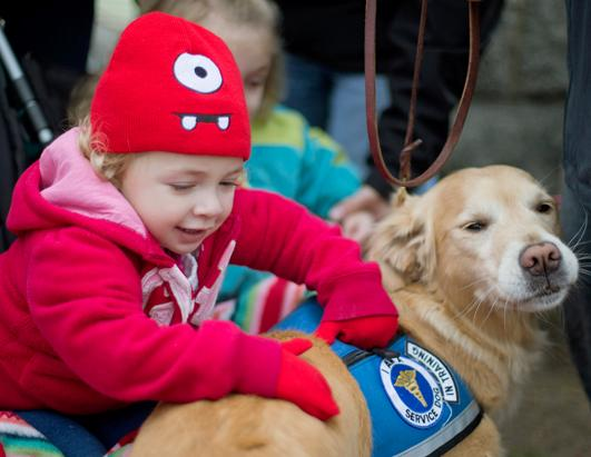 Comfort Dogs to the Rescue