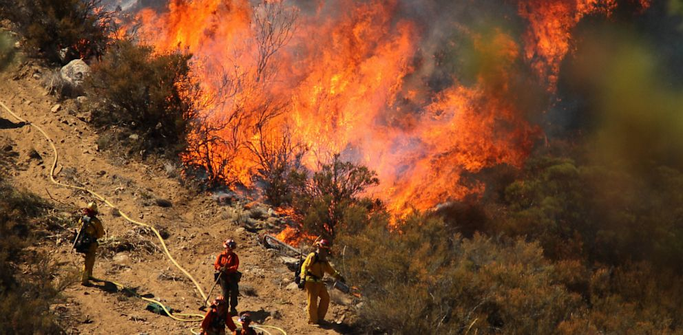 PHOTO: Firefighters in an engine company set fire to reinforce the line to stave off part of the Mountain Fire burning on July 17th, 2013.