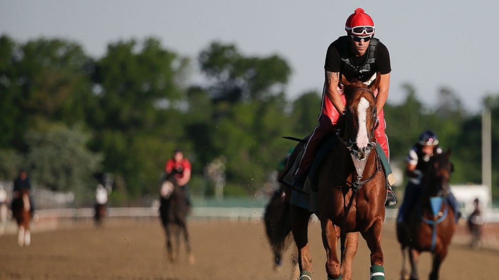 PHOTO: California Chrome takes a lap, with exercise rider Willie Delgado up, during a workout at Belmont Park, June 6, 2014, in Elmont, N.Y.