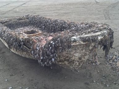 Mystery Boat Washes Up on West Coast