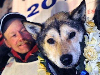 Photos: Iditarod Dog Sled Race 2013