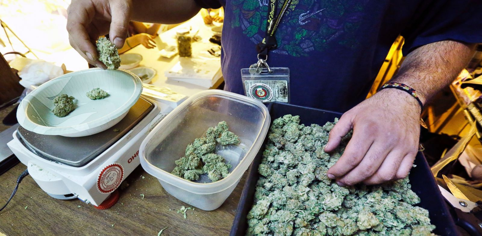 PHOTO: An employee weighs portions of retail marijuana to be packaged and sold at 3D Cannabis Center in Denver, Dec. 31, 2013.