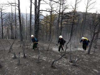 ap_wilderness_wildfires_jt_120630_mn.jpg