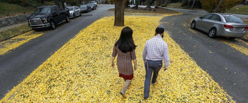 PHOTO: People walk amongst the fallen yellow leaves in Atlanta, Dec. 5, 2017.