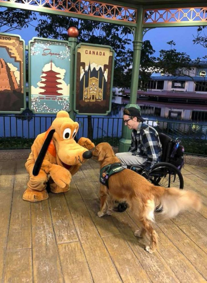 PHOTO: Julian Gavinos Golden Retriever service dog Atlas meets the giant version of Disney character Pluto at Epcot Center in Orlando, Fla., Jan. 19, 2018.