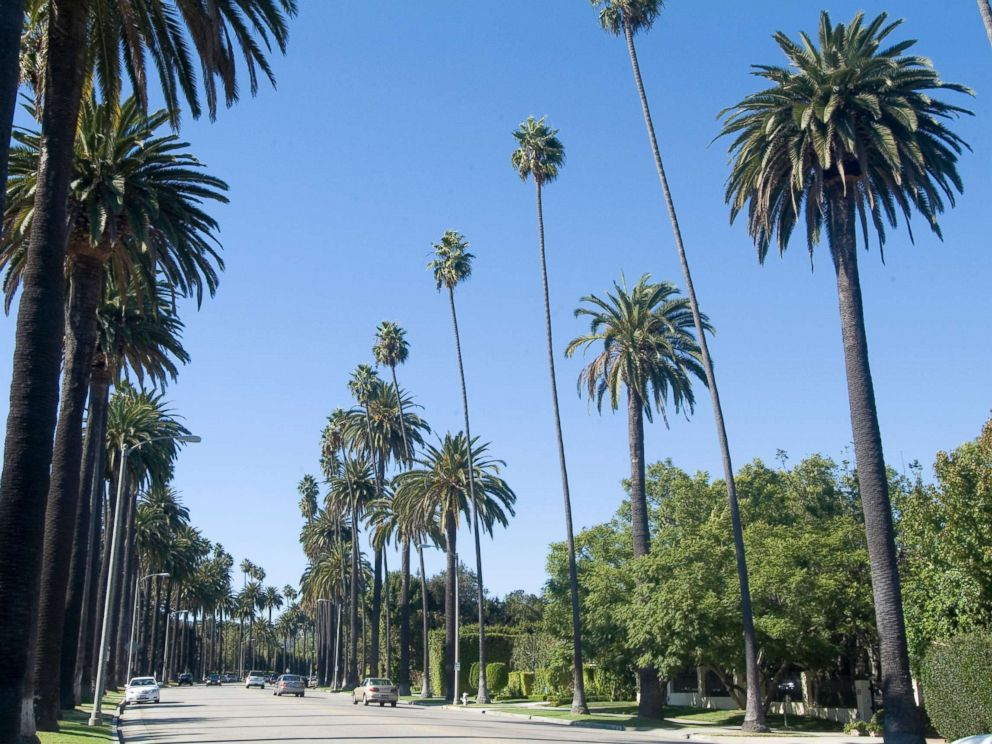 PHOTO: Beverly Drive in Beverly Hills, Calif., is pictured in this undated stock photo.