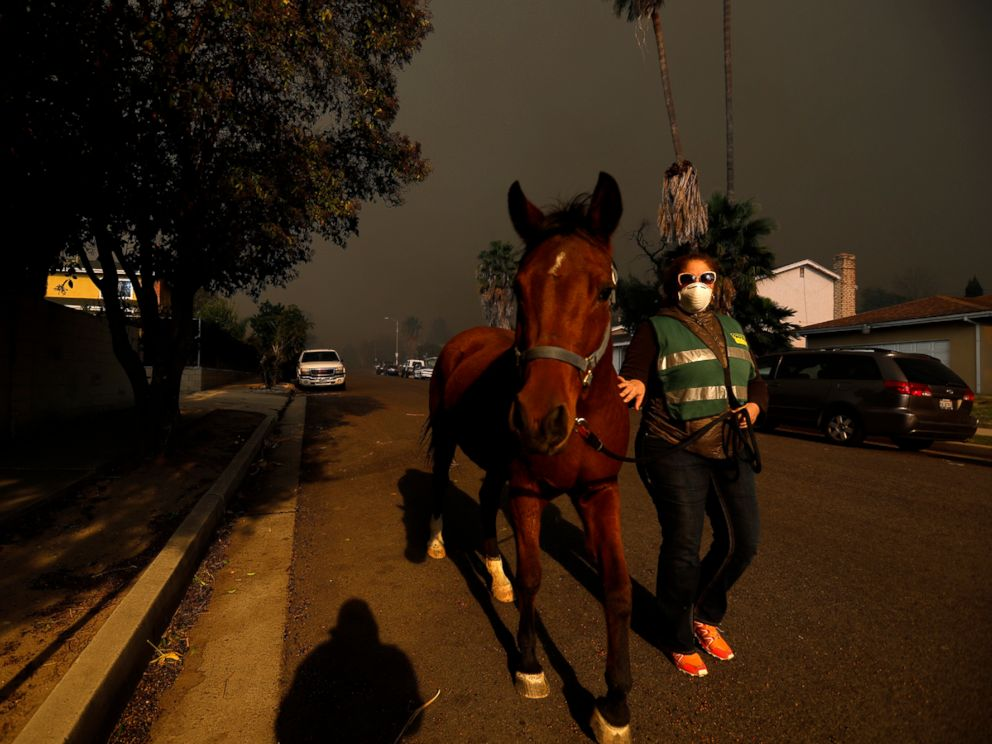 PHOTO: Gina Donaldson evacuates her horse as the Creek Fire bears down on Foothill Blvd. in Sylmar, Calif., on Dec. 5, 2017.