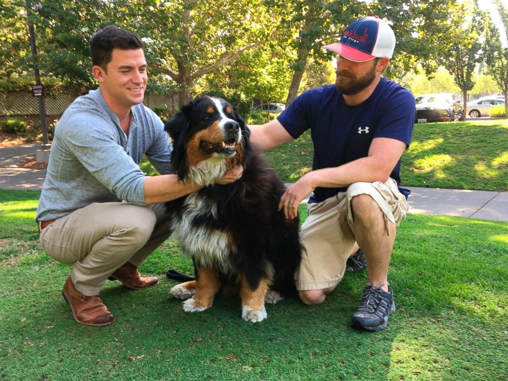 PHOTO: Jack Weaver, left, and his brother in law, Patrick Widen, pose with Izzy, a 9-year-old Bernese Mountain Dog, who belongs to Weavers parents, Oct. 14, 2017, in Windsor, Calif.