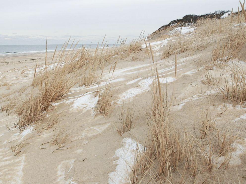 PHOTO: The sand dunes in Truro, Mass.