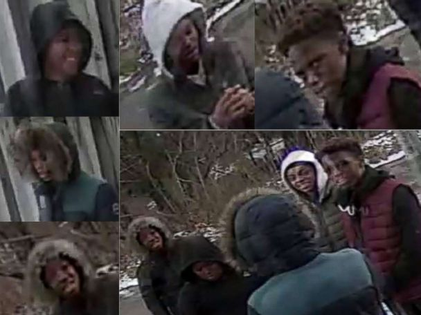 Baltimore police looking for suspects caught on video beating, burning cat