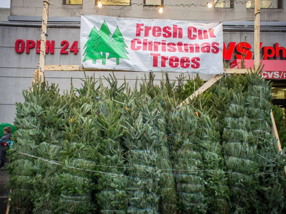 photo christmas trees for sale in the new york neighborhood of chelsea - Real Christmas Tree Prices