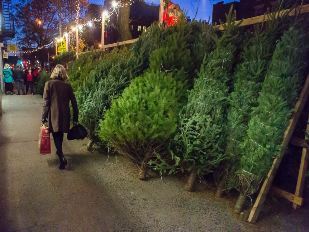 photo christmas trees for sale in the new york neighborhood of chelsea - Sales On Christmas Trees