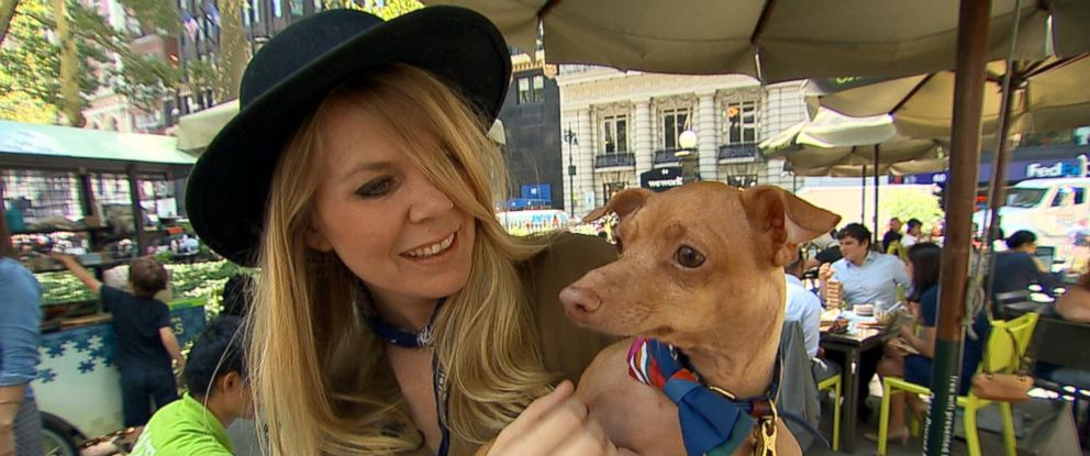 "PHOTO: The owners of some of the most influential animal social media stars shared their tips with ""Good Morning America"" for how to turn your pet into a social media star."