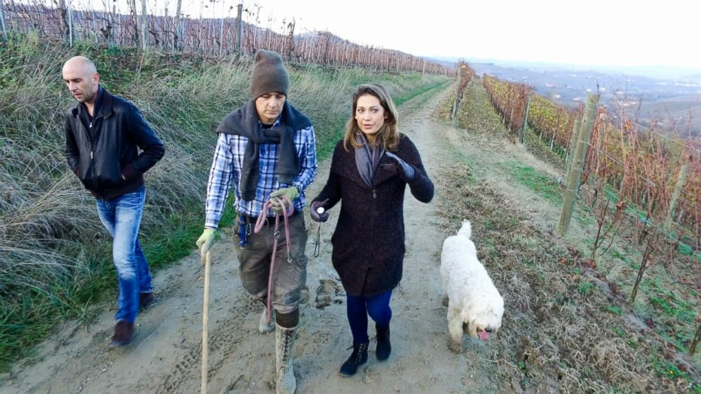 PHOTO: Ginger Zee tags along for a truffle hunt in Alba, Italy with activists Carlo Marenda and Edmondo Bonelli, founders of Save the Truffle.