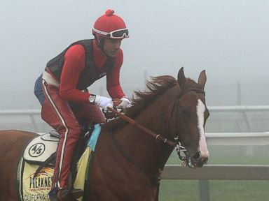 Preakness Race This Saturday Will Give California Chrome Another Triple Crown Chance