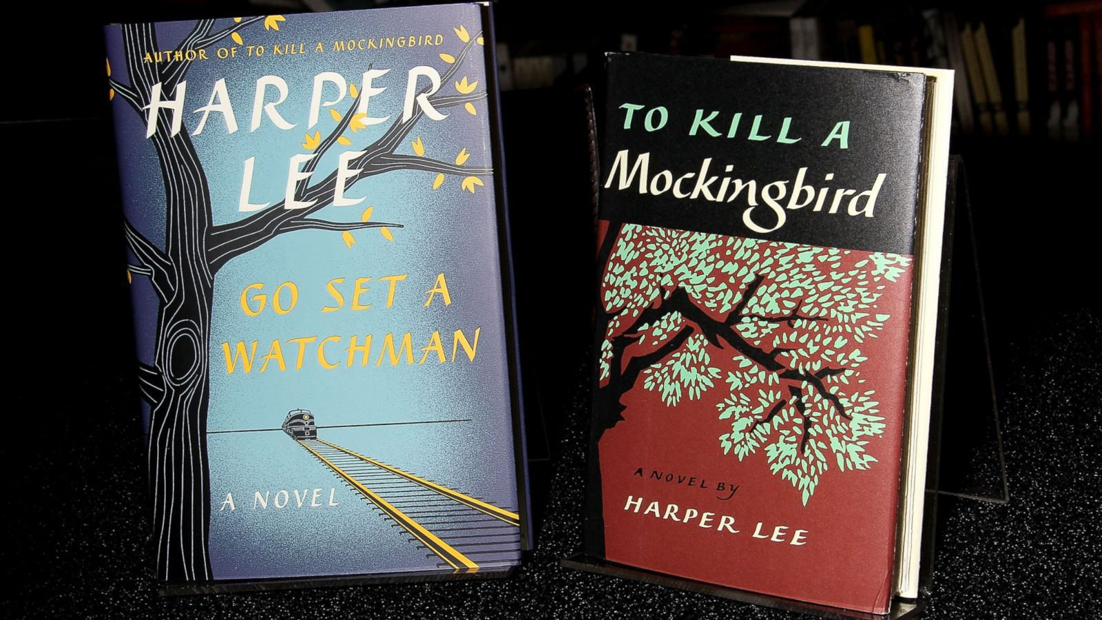 when was the book to kill a mockingbird published
