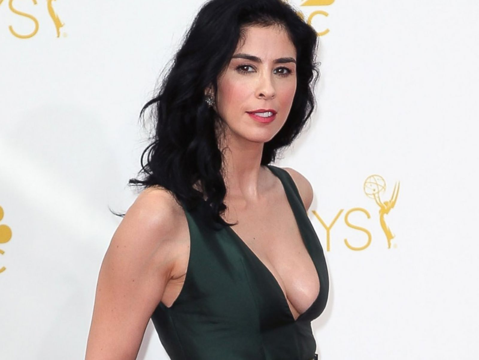 sarah silverman friends