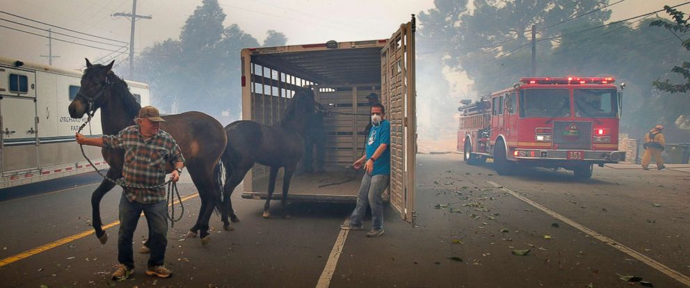 PHOTO: Horse owners start to evacuate their horses as the Creek Fire intensifies on Foothill Blvd in Lake View Terrace, Calif., Dec. 5, 2017.