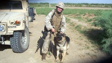 PHOTO: Sergeant Rex the Marine bomb-sniffing dog will be reunited with his former handler who had launched a high-profile campaign to adopt him.