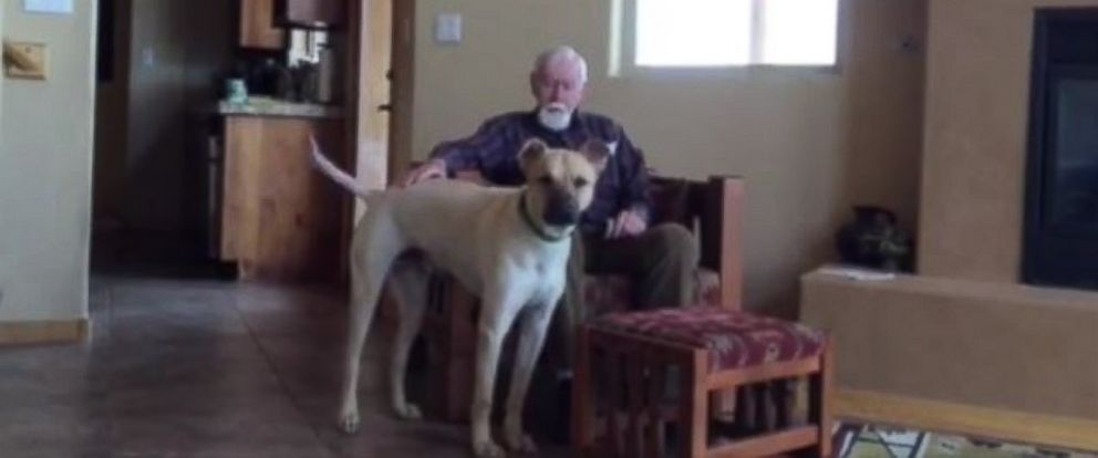 PHOTO: A man with Alzheimers temporarily regains his speech when petting the family dog.