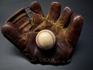 Hunting for a Duckweb Baseball Glove