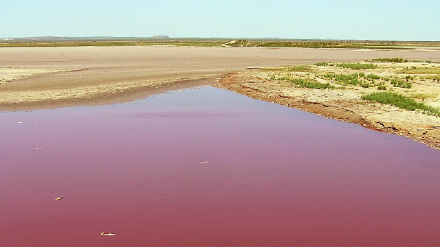 PHOTO: A severe, crop-killing drought in Texas has turned the O.C. Fisher Reservoir blood red.