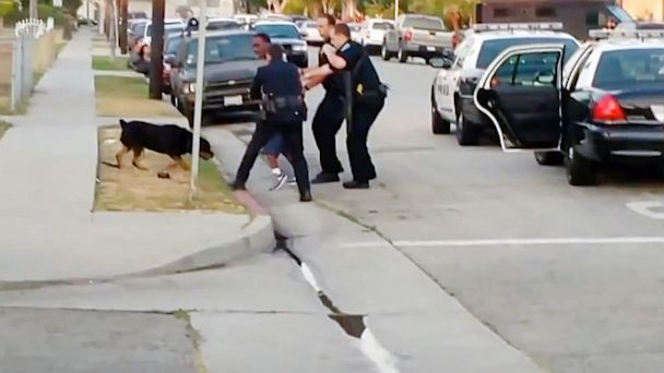 ht cops shoot dog ll 130704 16x9 608 California Police Release New Video of Dog Shooting
