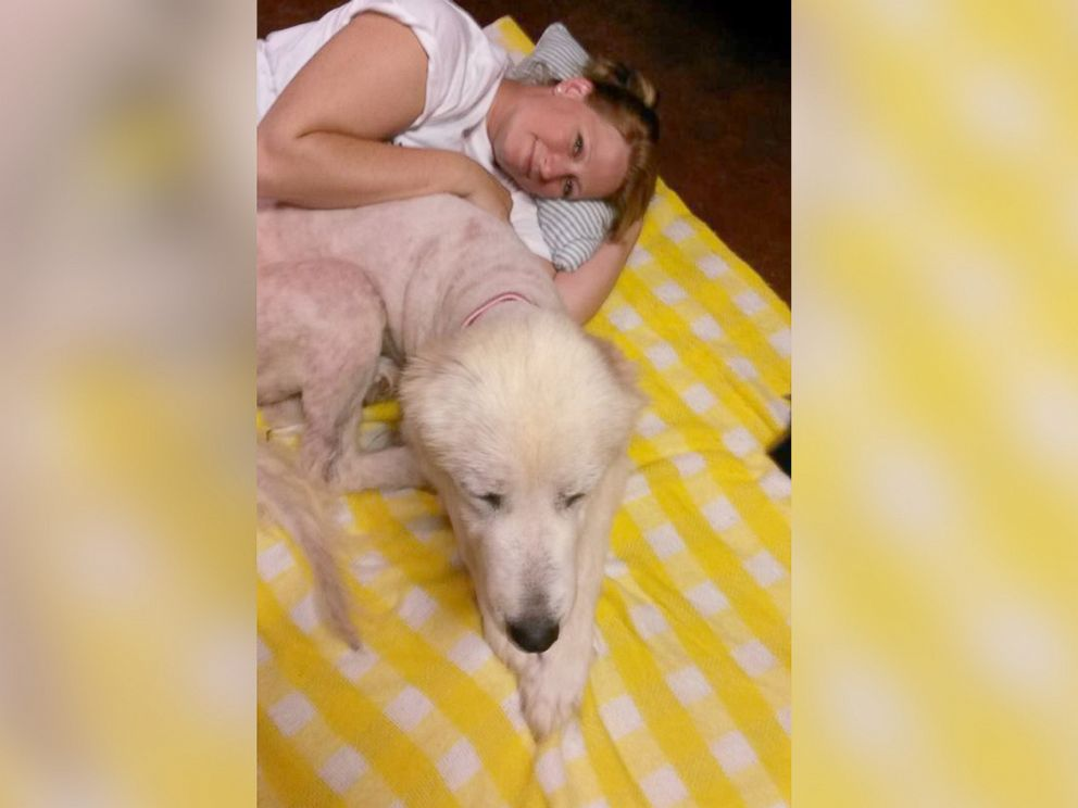 PHOTO: Michelle Shockley has adopted this Great Pyrenees, who she has since renamed Emma.