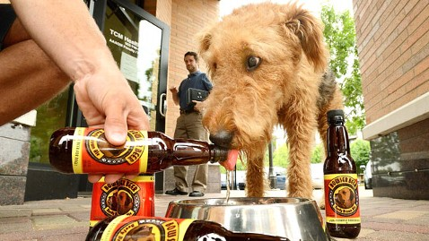 ht dog beer mr 120618 wblog Nightline Daily Line, June 18: Microsofts Mysterious Announcement