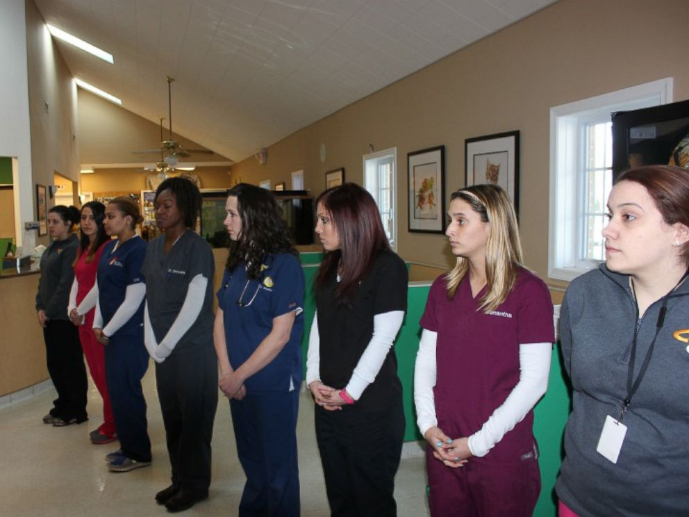 PHOTO: Veterinary staff were lined up on both sides of the entrance to pay their respects to Judge.