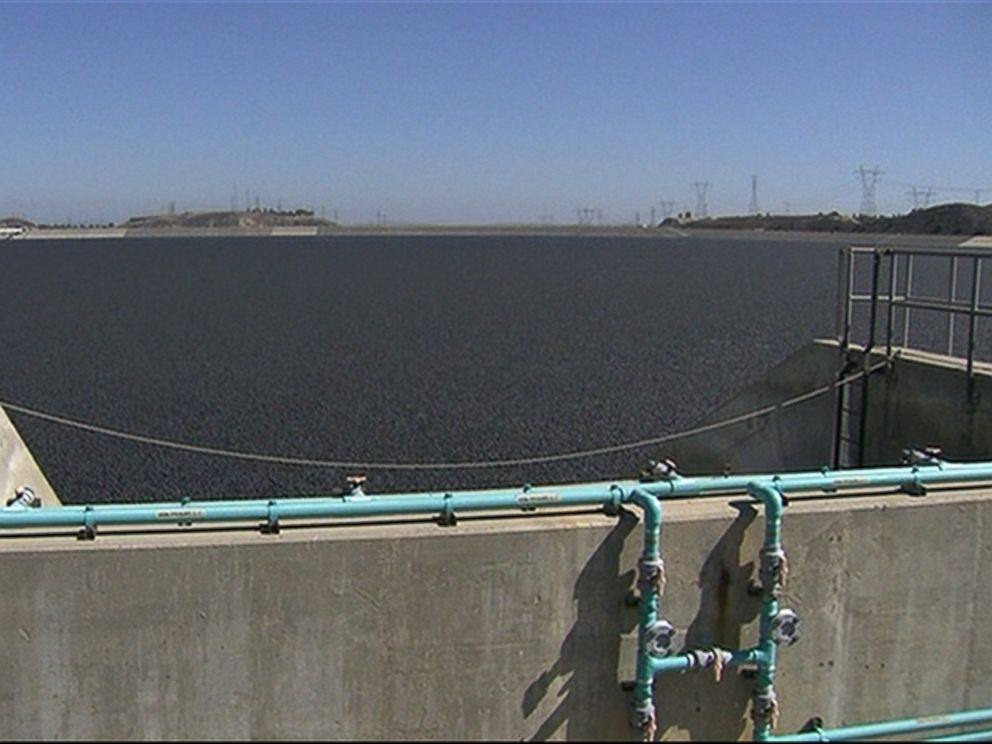 PHOTO: Plastic balls that provide shade to the water and prevent evaporation in the Los Angeles Reservoir were released on Aug. 10, 2015.
