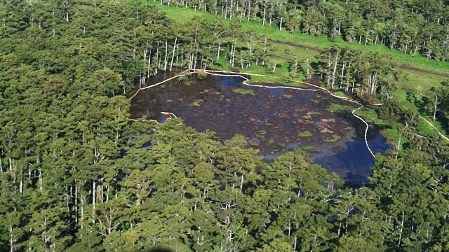 PHOTO: Louisiana sinkhole