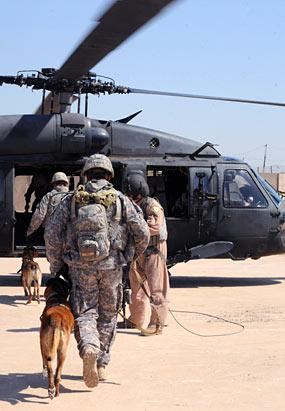 Dogs of War: Military's Secret Weapon