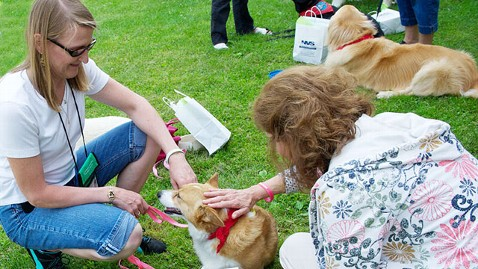 ht newtown dogs 2 mi 130624 wblog Newtown Community Thanks Therapy Dogs that Comforted Them