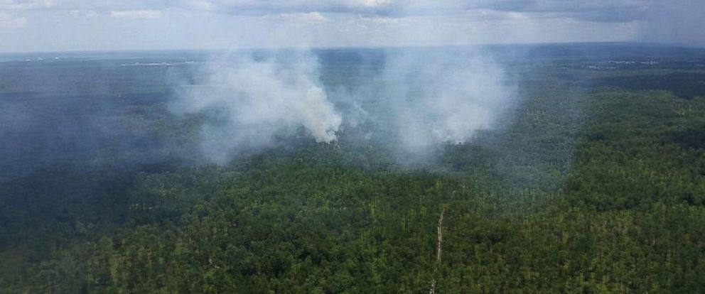 PHOTO: Smoke rises above the trees north of Charleston, S.C. near the site where the FAA says a military fighter jet crashed into a Cessna on July 7, 2015.