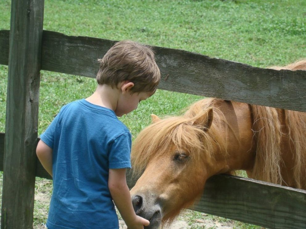 PHOTO: The farm is open to visitors every Saturday from 11am to 3pm. The price of admission is two carrots.