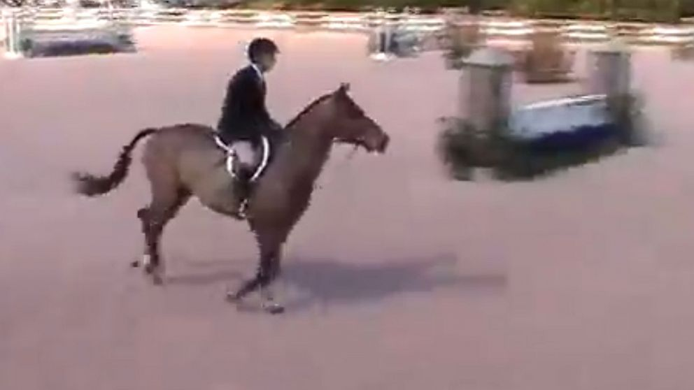 PHOTO: Horse trainer Ross Reisner, seen here in this undated grab from YouTube, was shot dead in his Long Island home on Sept. 24, 2013.