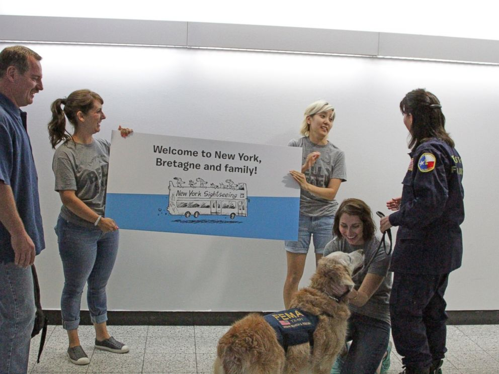 PHOTO: Bretagne, the last known living 9/11 search-and-rescue dog, was honored for her service and given a 16th birthday celebration on Sept. 4, 2015.