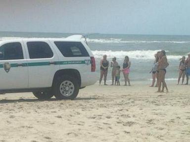 7th Shark Attack Reported in North Carolina