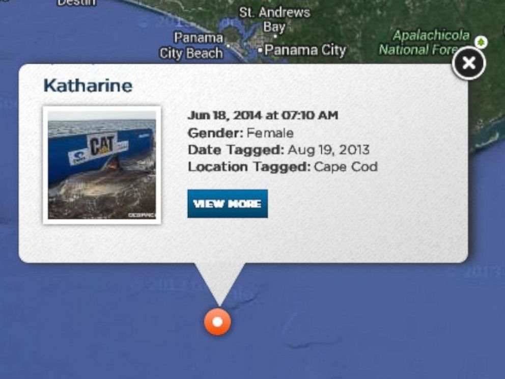 PHOTO: Pictured is the OCEARCH Global Shark Tracker.