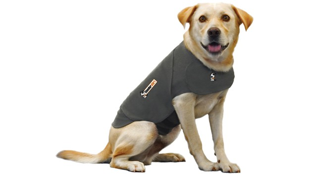 PHOTO: The Thundershirt, seen here in this undated handout photo, claims to calm dogs' anxiety.
