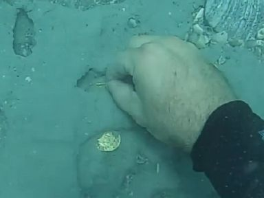 PHOTO: 60 gold artifacts valued at more than $1 million were discovered off Floridas Treasure Coast.