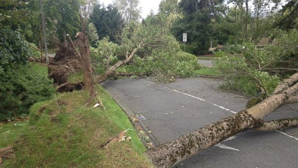 http://a.abcnews.com/images/US/ht_washington_state_storm_jc_150830_16x9_608.jpg