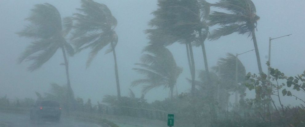 PHOTO: Palm trees bend in the wind as Hurricane Irma slammed across islands in the northern Caribbean, Sept. 6, 2017, in San Juan, Puerto Rico.